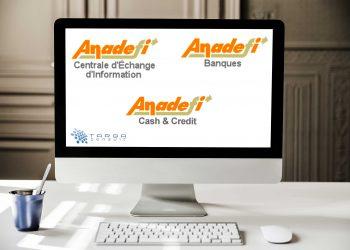 AnaDEFI Targa solutions